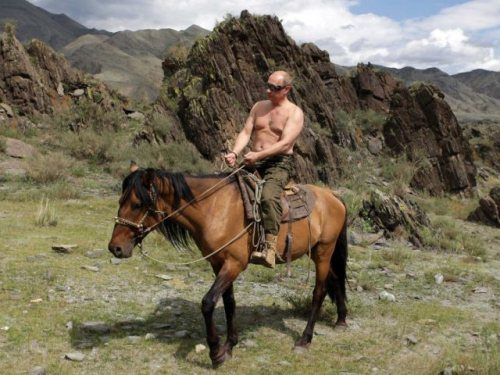 vladimir-putin-most-interesting-man-in-world-24