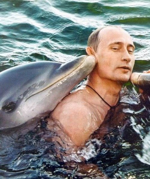 vladimir-putin-most-interesting-man-in-world-28
