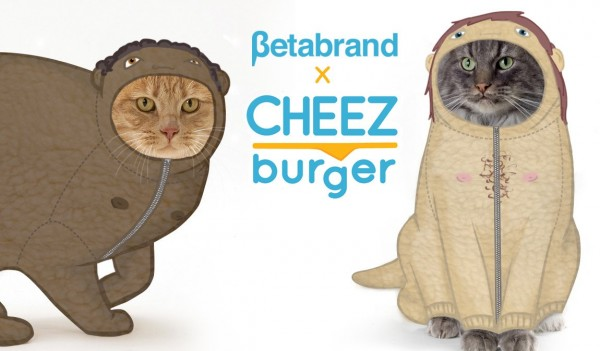 1150x673xcheezburger_clothes_for_cats_collection_1.jpg.pagespeed.ic.dvHsdnRz8g