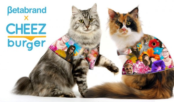 1150x673xcheezburger_clothes_for_cats_collection_2.jpg.pagespeed.ic.e9SBCg4IHa